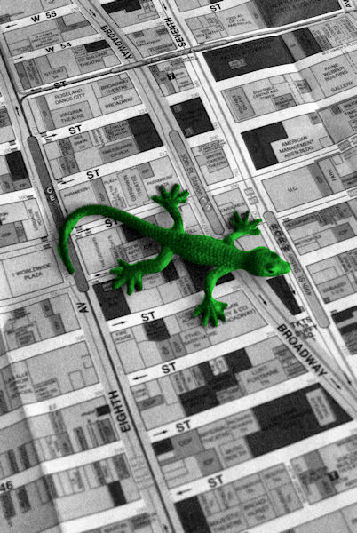 A black and white photo of my mascot - a green lizard - finding its way in NY city