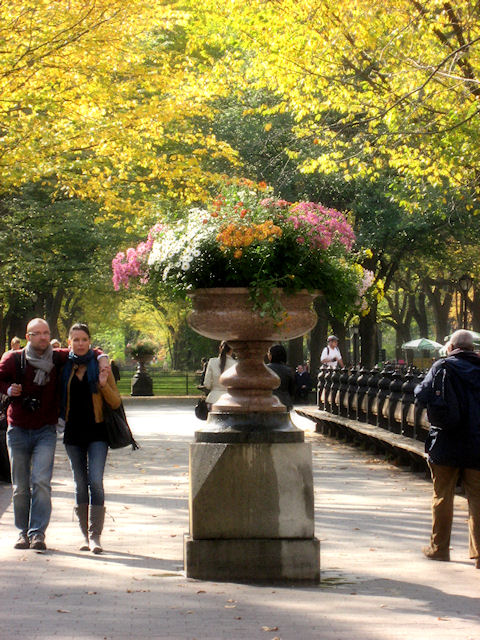 Photo of flower pot and romantic couple in Central Park taken by Joana Miranda