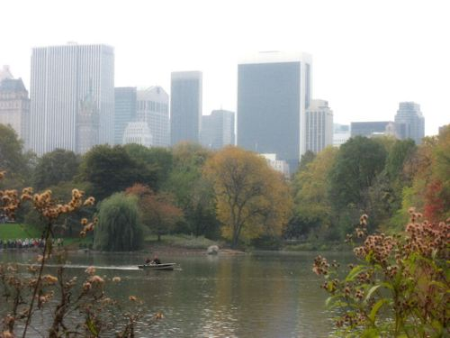 Photo of pond in Central Park with rowboats taken by Joana Miranda