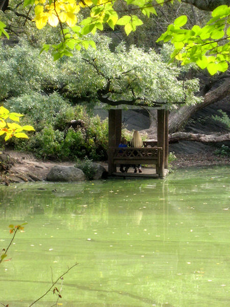 Photo of girl and young boy in lake side gazebo in Central Park taken by Joana Mirand