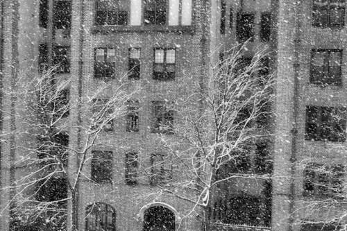 Photo of Upper West Side in a snow storm taken by Joana Miranda
