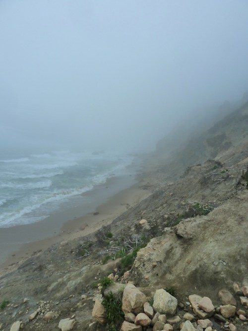 bluff in the fog4