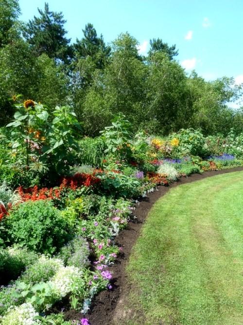 Wildflower garden at SPAC