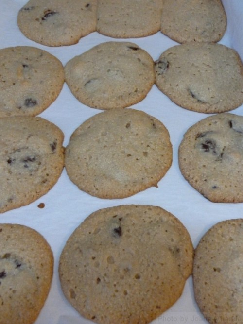 fresh baked ginger chocolate chip cookies