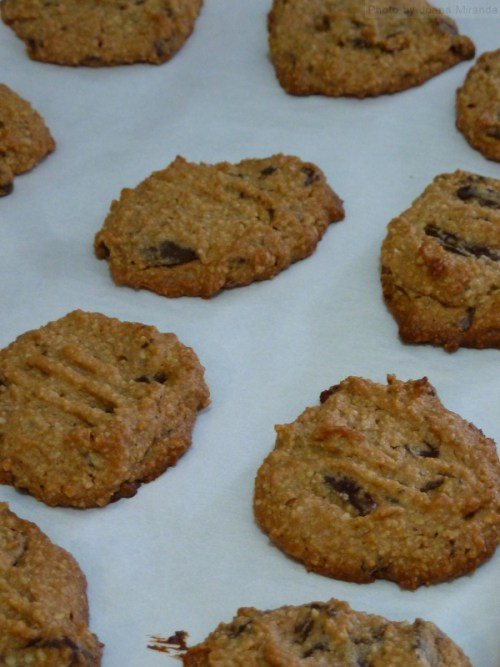 Photo of cookies fresh out of the oven