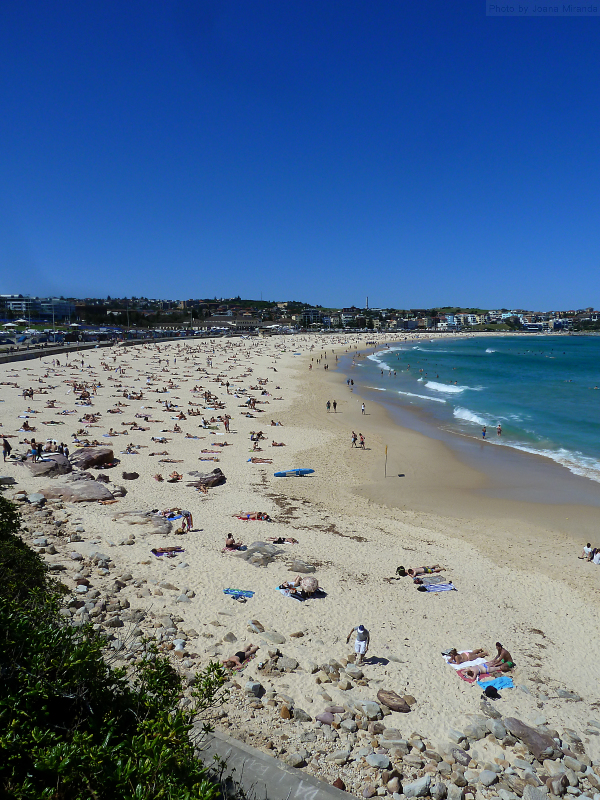 Photo of Bondi Beach and the Coastal Walk, taken by Joana Miranda