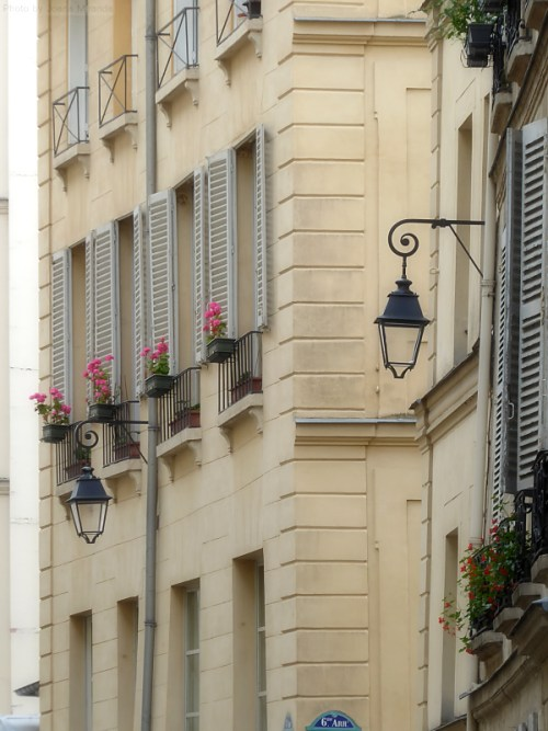 Flower boxes in the 6th Arr