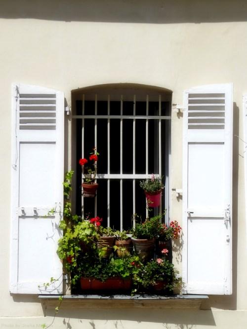 Flower pots in Montmartre