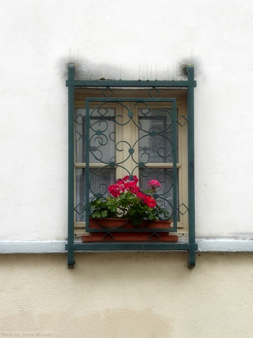Lace curtained window in Montmartre