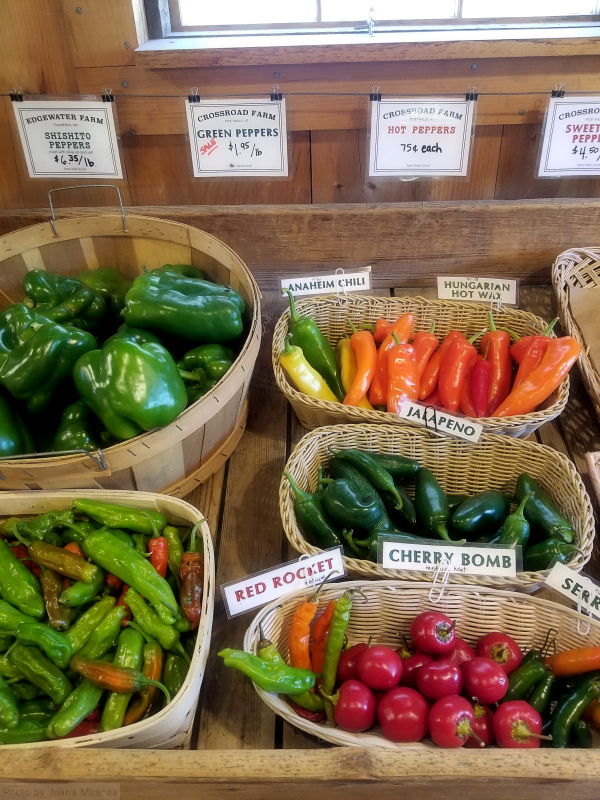 Photo of organic Vermont farm stand peppers