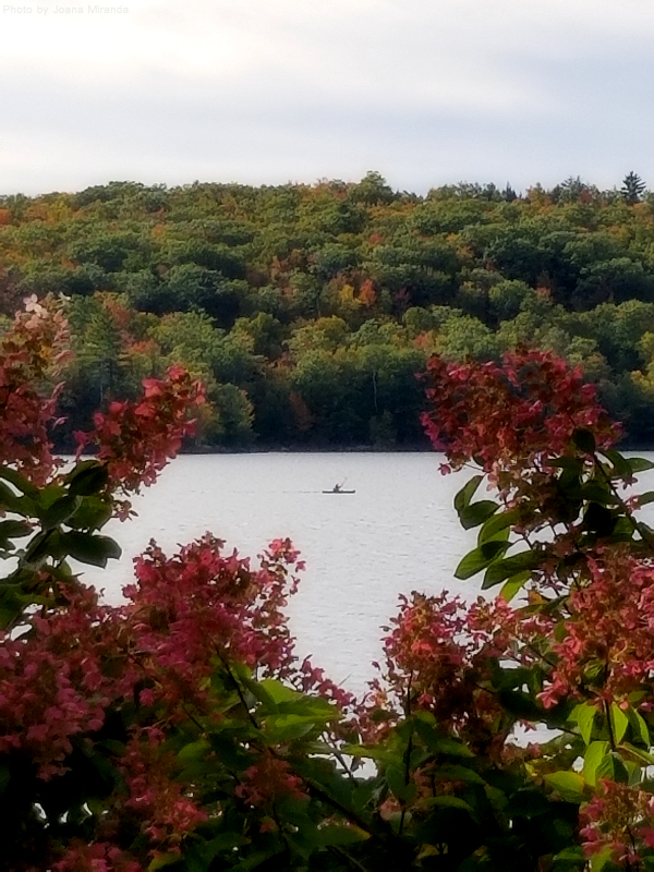 Photo of Goose Pond in early October