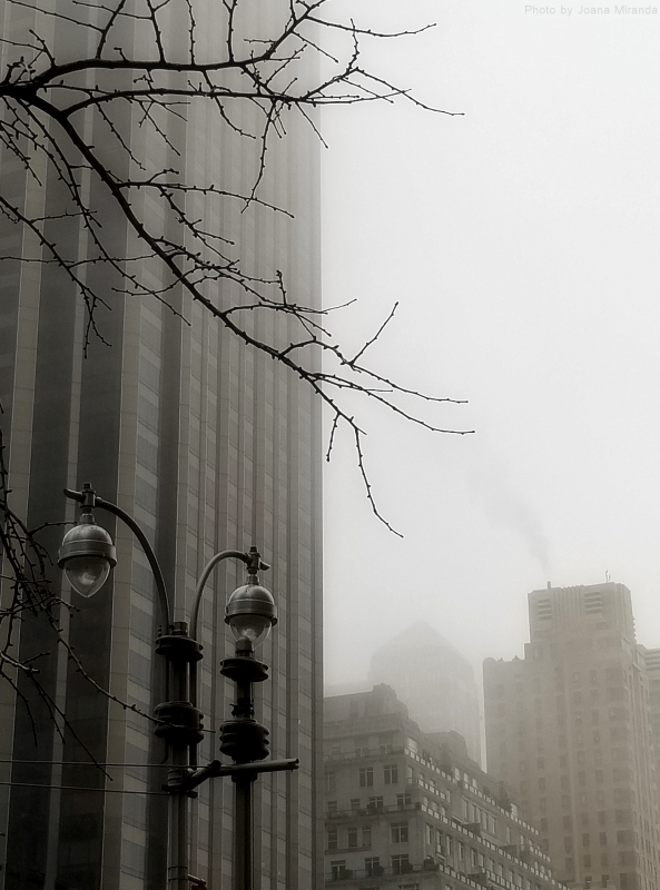 Photo of a foggy day in New York City by Joana Miranda