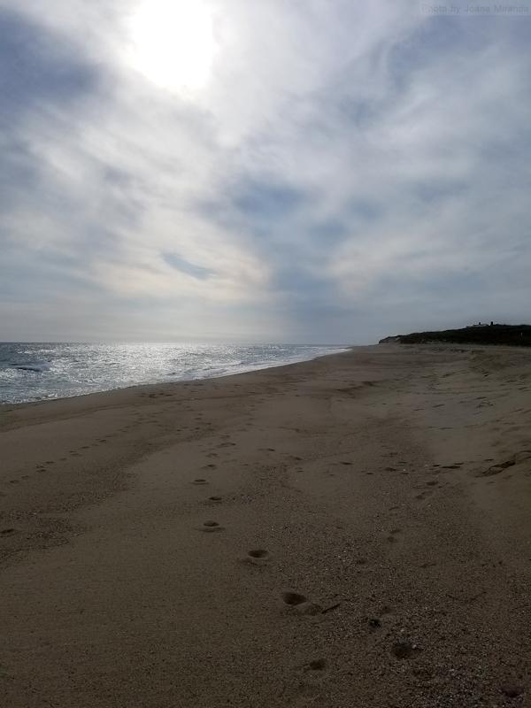 Photo-of-beach-on-Nantucket-taken-by-Joana-Miranda