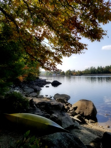 More inspiration for my fall art projects - Goose Pond, NH