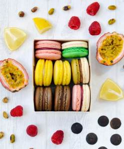macarons vegan jo and nana cakes