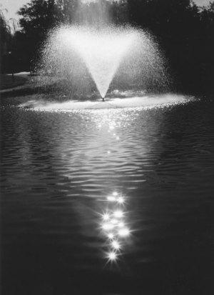 1998057011 UNM Campus Fountain 1998