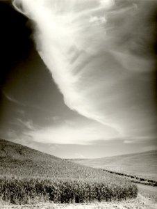2002026003 Wheatcountry, WA 2002