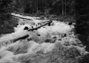 2005011013 Popo Agie River, WY 2005