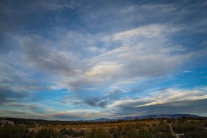 20151568DC Quiet Light, NM 2015