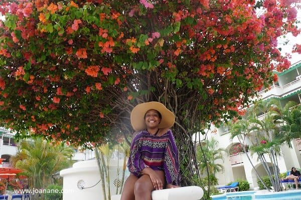 Bougainvillea Beach Resort Garden