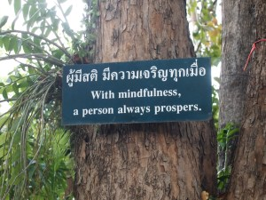 With Mindfulness a person always prospers