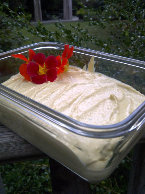 Homemade Hummus served with some nasturtiums from my garden. Copyright Jo-Ann Blondin