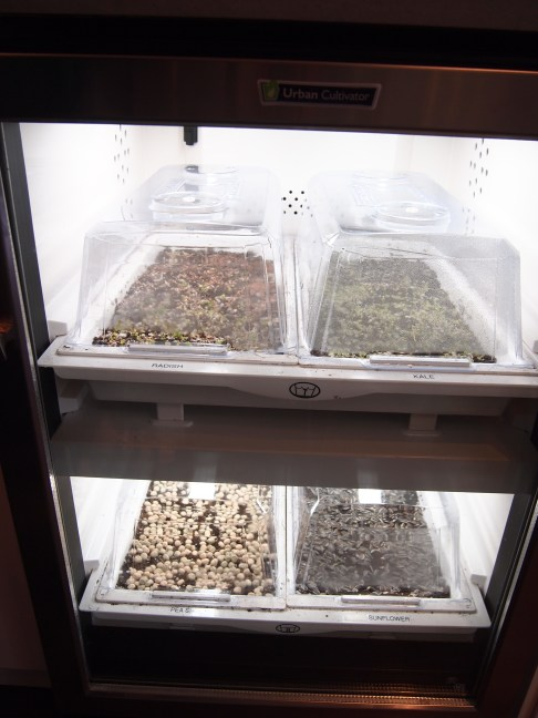 Urban Cultivator - ready to grow some sprouts. Kitchen envy :) Copyright Jo-Ann Blondin