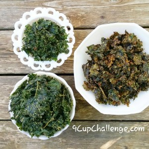 Kale Chips Brown Board 9CupChallenge.com