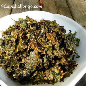 Kale Chips Hot and Smoky 2 9CupChallenge.com