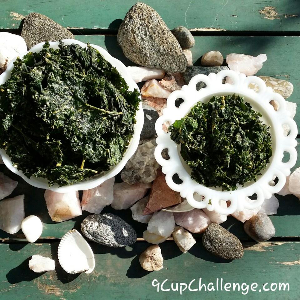 Kale Chips on rocks 9CupChallenge.com