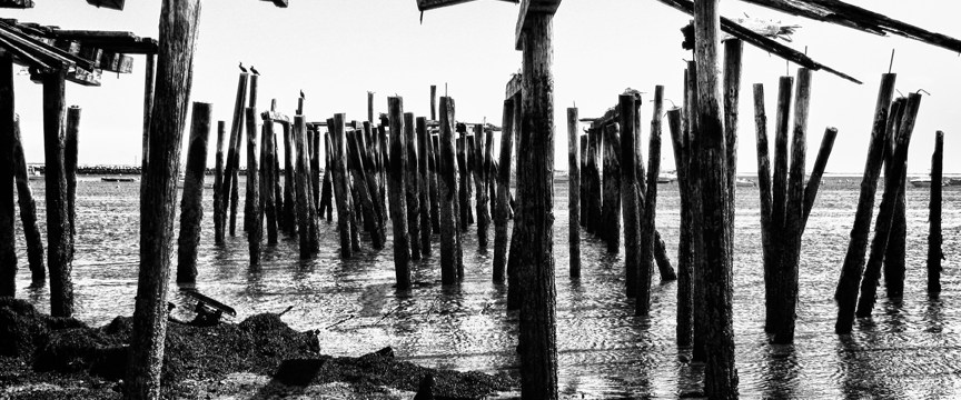 art photographs of Provincetown
