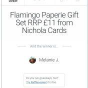 flamingo paperie winner