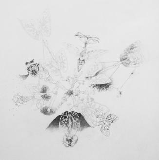 Joanne Proctor .• Lydia Holmes .• Grace McMurray, Untitled, Graphite on Paper, 31 x 28cm, 2013 © JLG Constructions, 2016