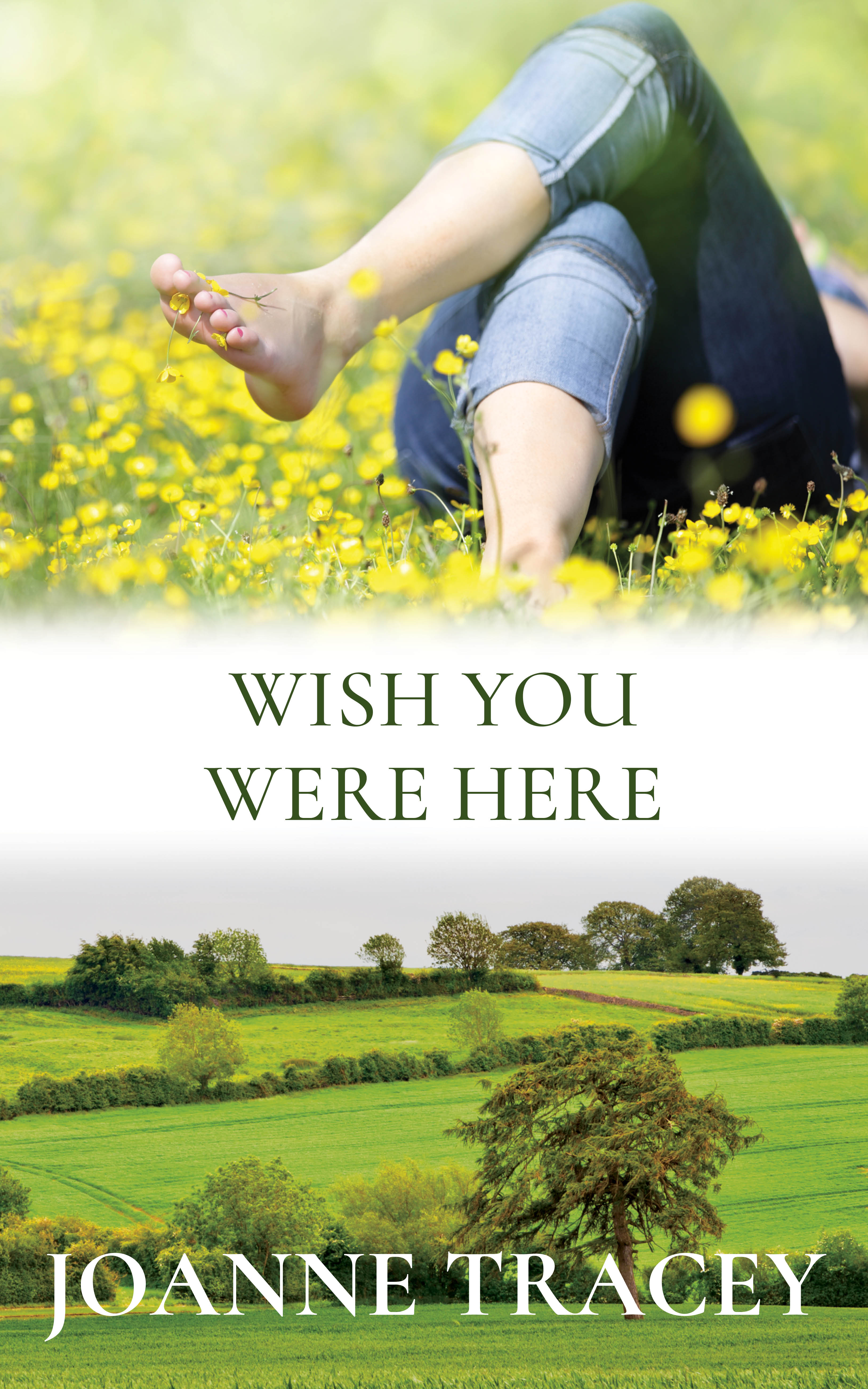 Wish You Were Here: Unveiling the Cover