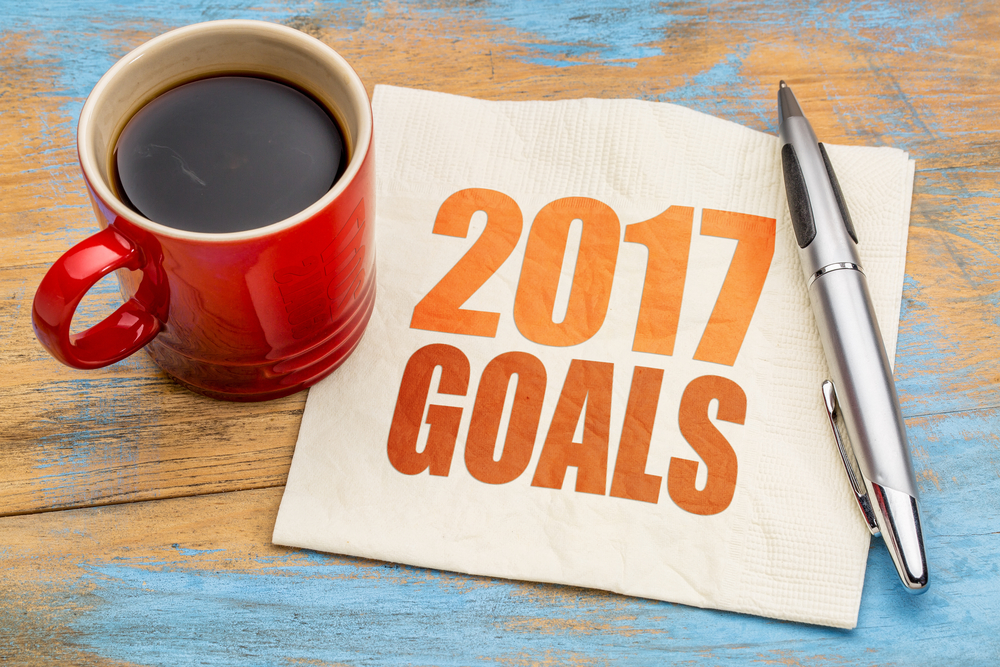 2017: The Writing Goals