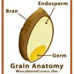 whole+grain