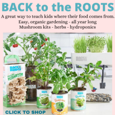 Back to the Roots Promo with plants
