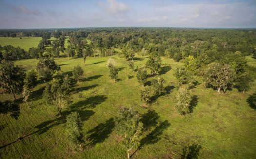 Ocala's Most Trusted Agent | Horse Farms Luxury Estates