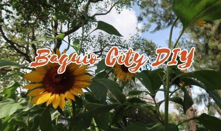 baguio city diy