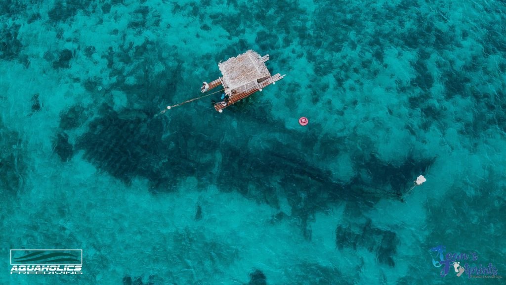 shipwreck in dasol pangasinan