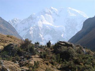 Andes Snowcap