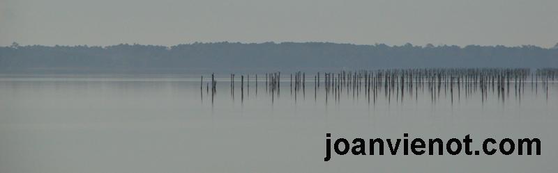 Decoy pilings in hazy bay
