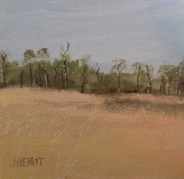 Oil painting study, Bayou Grass, Point Washington, FL