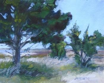 Oil painting of a cedar tree and near shore grassland of St. Andrews Beach on Jekyll Island