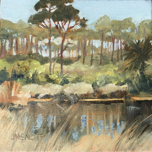 Oil painting of a pond in the preserve off 6th street on St. George Island