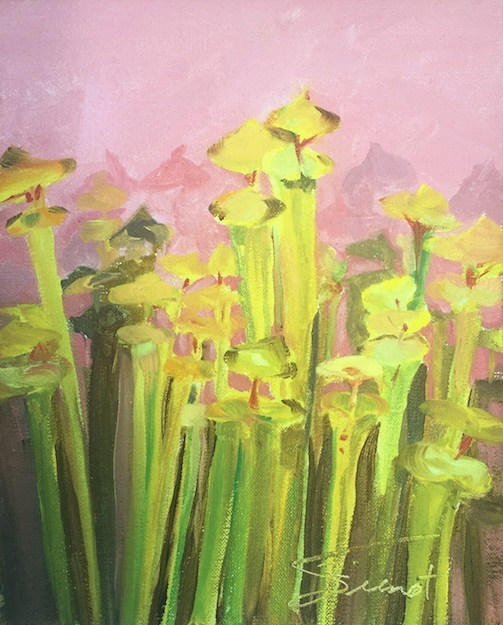 Oil painting of pitcher plants painted en plein air at the E.O. Wilson Biophilia Center in Freeport, FL