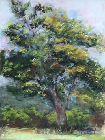 Soft pastels painting of an old leafy tree