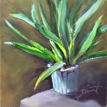 2018-0121 Aloe