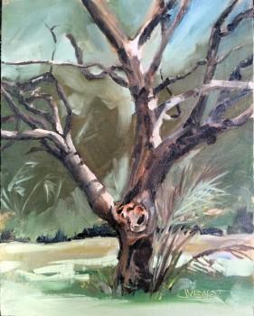Oil pain ting of an old misshapen oak tree in Apalachicola, FL