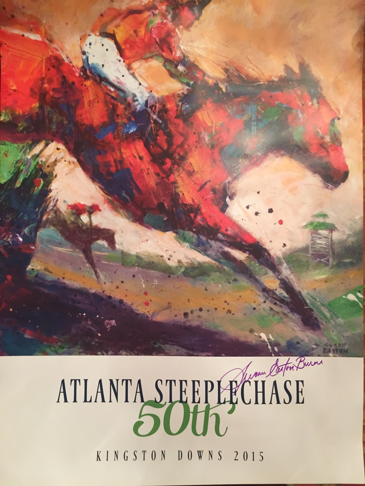 Atlanta Steeplechase 2015: My Four Favorite Things